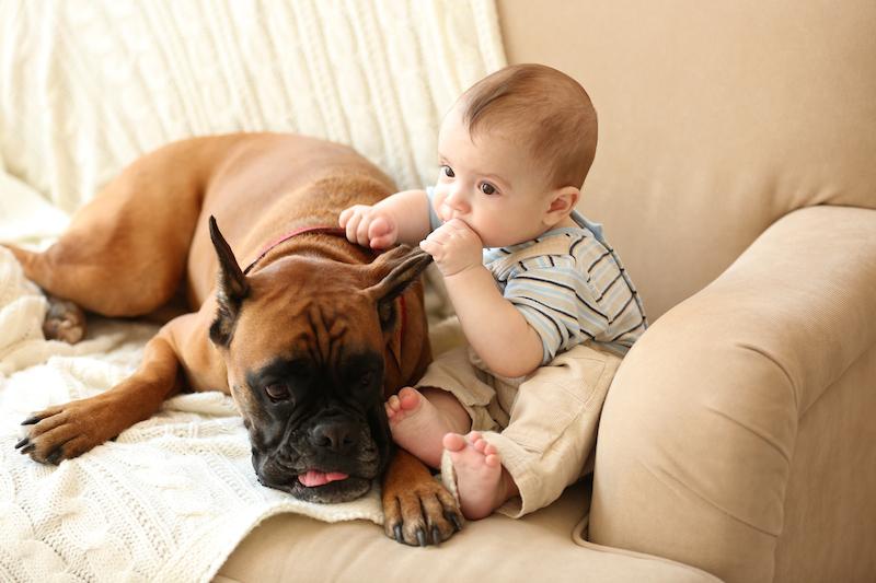 Dieťa vyrastá so psom