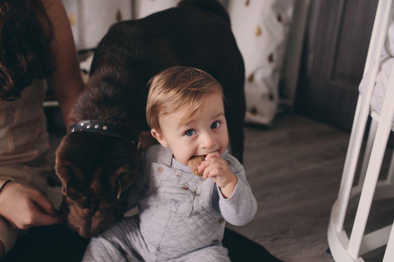 Zvieratá v domácnosti a detská imunita