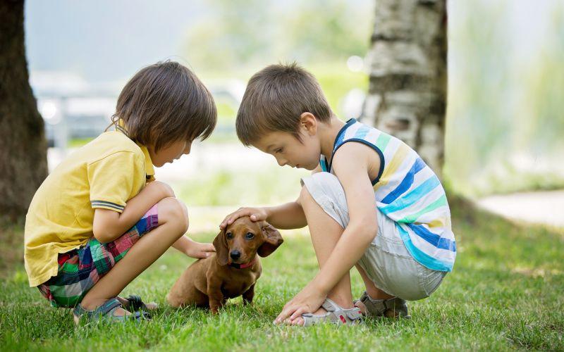 Povaha milovník detí