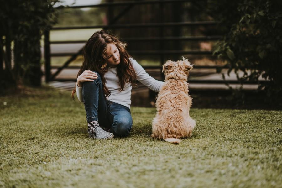 Pes a dievča