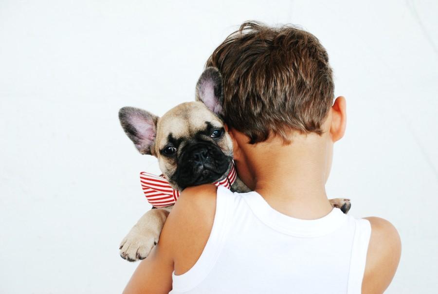Chlapec a zviera